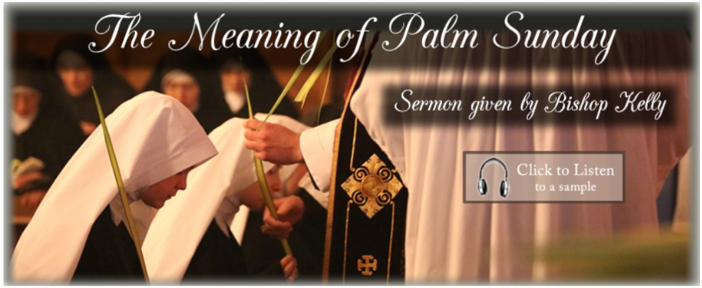 The Meaning of Palm Sunday (Bp. Kelly)